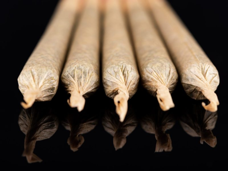 Cannabis Marijuana Rolled in Joints on Dark Reflective Background.