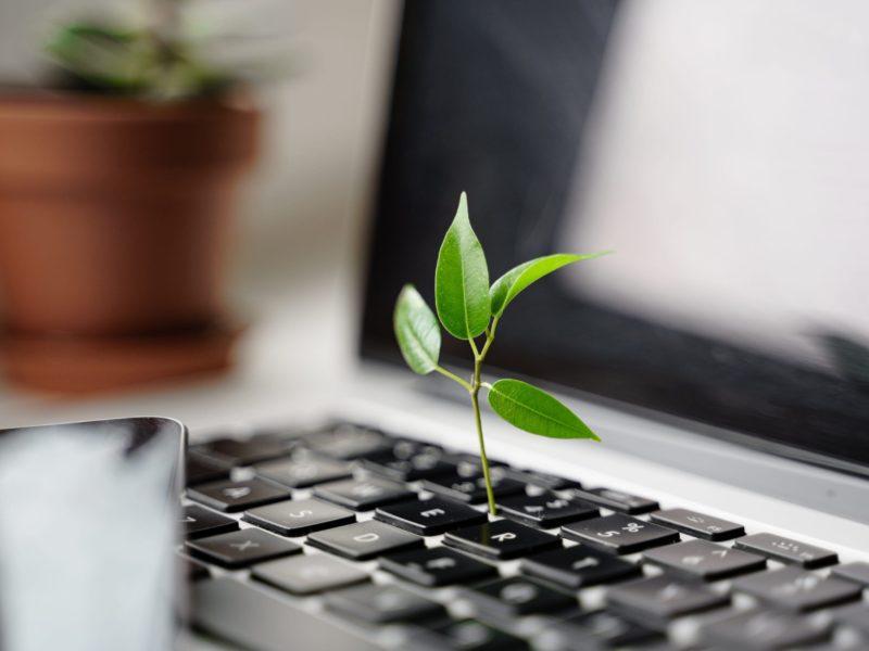 digital-sustainability-tech-carbon-footprint-green-WDE67CU