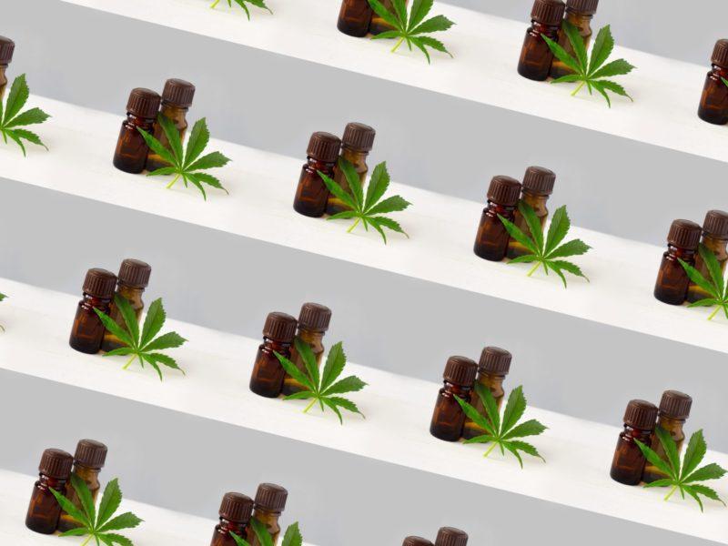 leaf-NUVXK3E